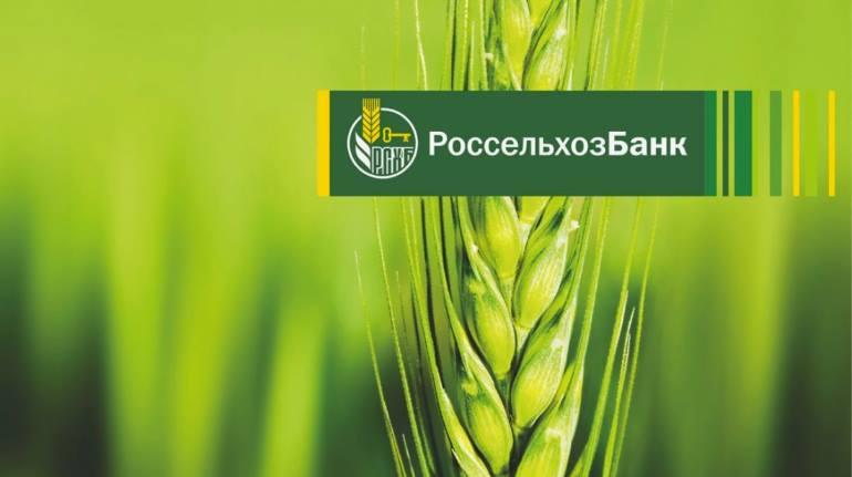 Расчетный счет в Россельхозбанке для ИП и ООО. Тарифы и документы на РКО